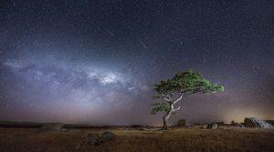 cieli-stellati-foto-notturne-via-lattea-fotografia-48